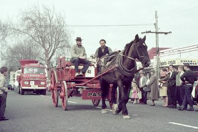 Shire horse and cart