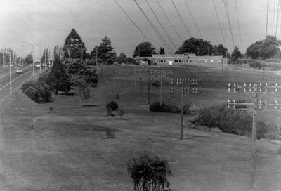Telephone poles at Hamilton Gardens site