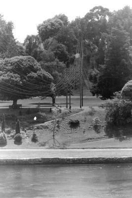 Telephone wires over the Waikato River by Parana Park