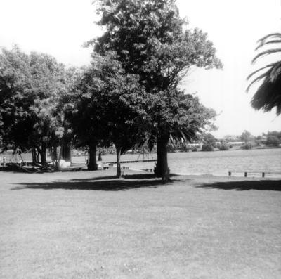 Hamilton Lake playground area