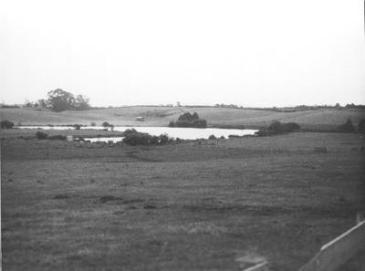 Probably Lake Rotokaeo