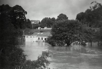 Waikato River in flood beneath Hamilton City waterworks on Cobham Drive