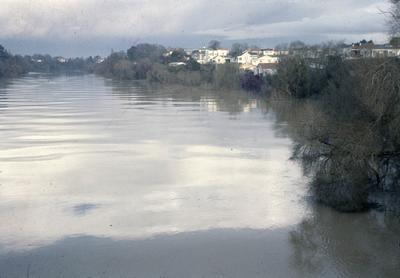 Waikato River in flood