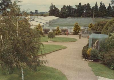 View across cages / shrubbery