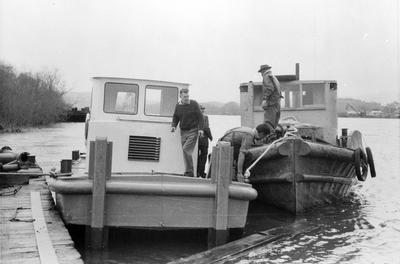 Mr. Wainui after launching at Mercer