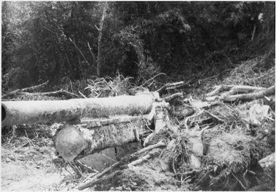 WWl cannon