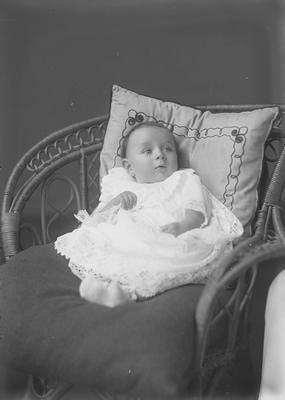 Baby Polwart