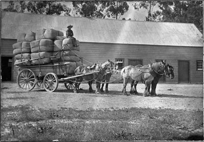 Wool bales off to sale
