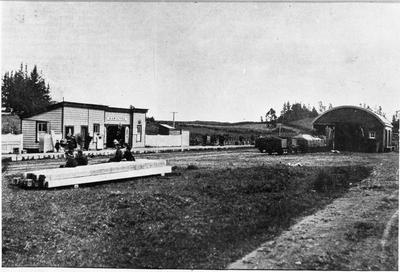Hamilton railway station and goods shed
