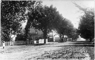 Grey Street Hamilton East