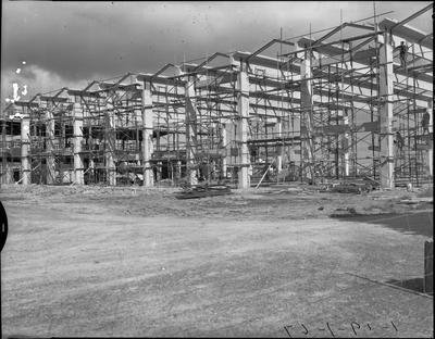 Waikato Winter Show buildings under construction