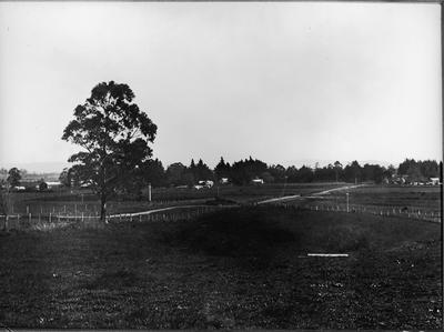 An early view of Frankton