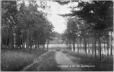 Glimpse of the Lake, Hamilton