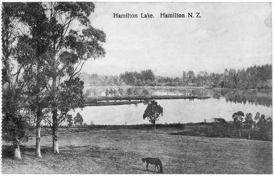 Lake Rotoroa c. 1890s