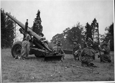 Artillery training at the Lake Domain Reserve