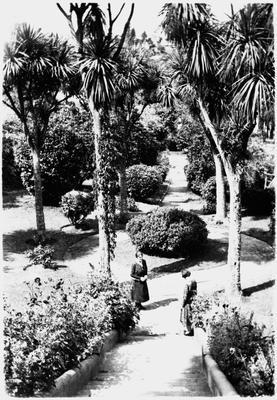Innes house - front garden - Hamilton