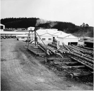 Ellis & Burnand Ltd.'s Putaruru timber mill