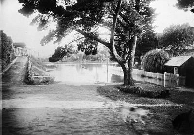 Flood at Ngaruawahia in 1907