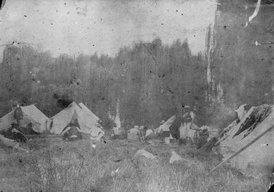 Camp site in Ngaruawahia