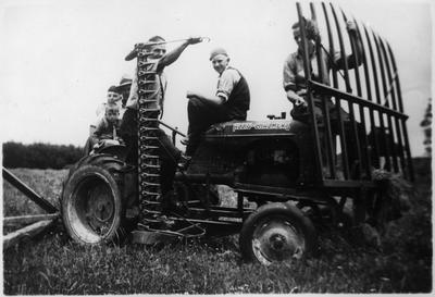 Orini - haymaking 1937-1939
