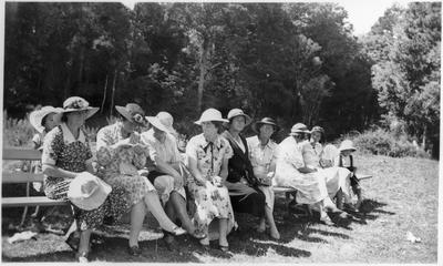 Orini School picnic