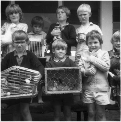 Orini School Pet Day 1974