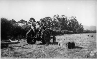 Collecting baled hay