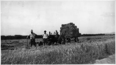 Haymaking at Proctors