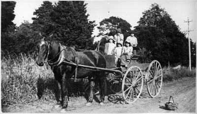 Orini - Catley family on horse cart