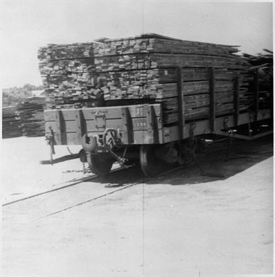 Ellis and Burnand - ? export timber on railways