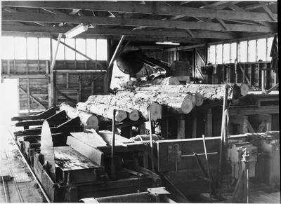Inside Ellis & Burnand Ltd.'s Putaruru mill