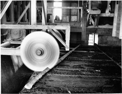 Inside Ellis & Burnand Ltd.'s Putaruru timber mill