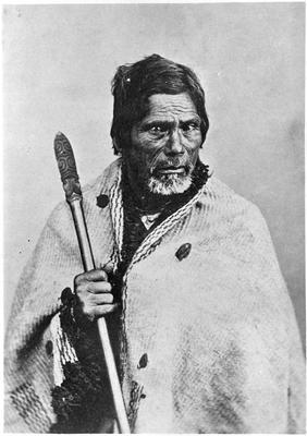 Old Maori Man Wiremu Te Neera