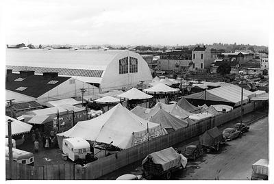 Waikato Winter Show c. 1953