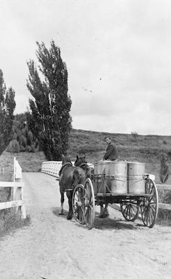 Young man driving horse and cart with milk cans across bridge