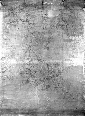 Newell's map of Waikato