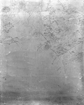 Newell's map of Waikato bottom left