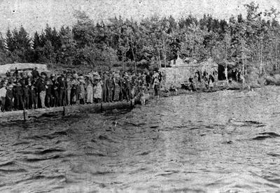 Regatta at Lake Rotoroa