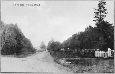 Old Whatawhata Road, Hamilton