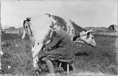 """Marjory"" (cow) 54th Squadron R.F.C."