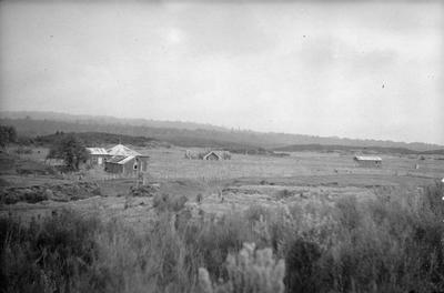 Wirianga Te Kahara, Te Tiroa, Mangapeehi - Hauhau temple