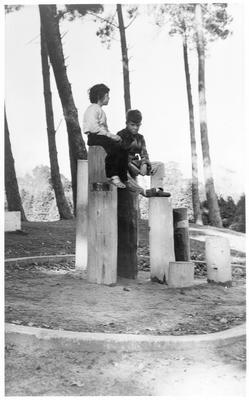 Hamilton Lake Domain - Children's playground