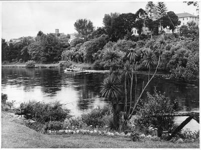 Waikato River from Memorial Park