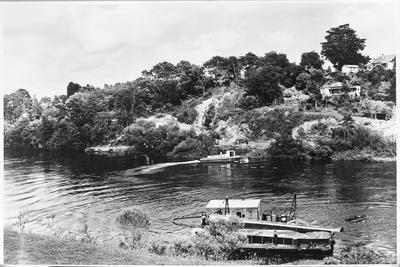 Waikato River Westbank