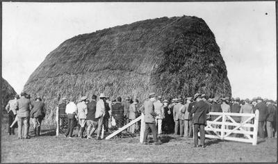 Farmers around haystack