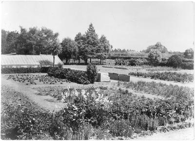 Horticultural section