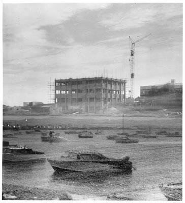 Tower block construction, Ruakura