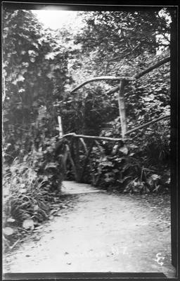 River path and bridge