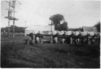 Original prints - Bundles of flax drying - Mercer