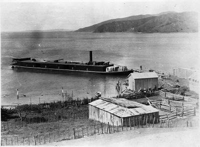 Rawhiti at Port Waikato